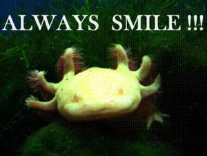 Always smile!